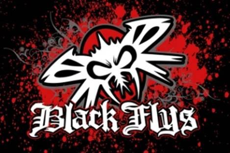 blackflys logo